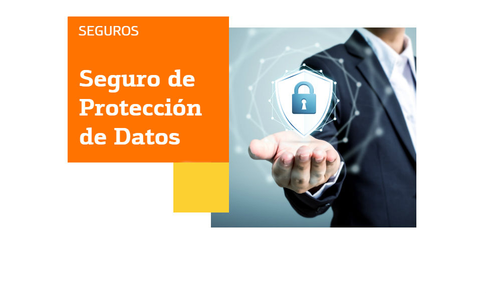 seguro proteccion datos